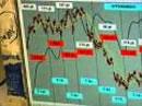 Torreggiani euro-dollaro